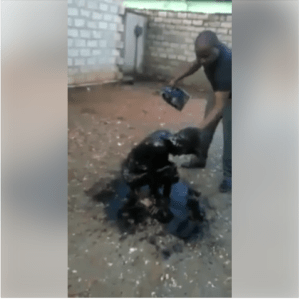 Is This Right? See What Was Done To A Teenage Girl For Stealing From A Home